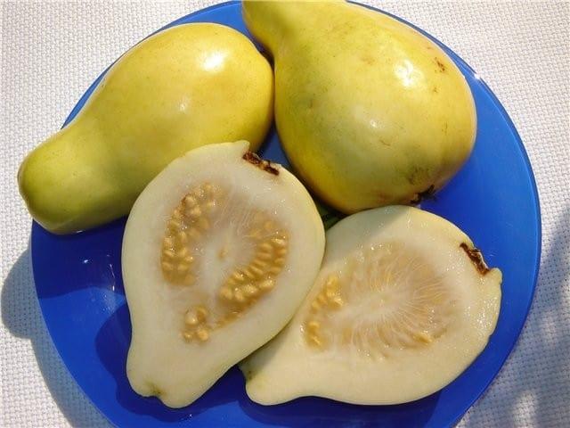 فوائد الجوافة و اوراقها الصحية