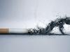 ماهو ضرر التدخين