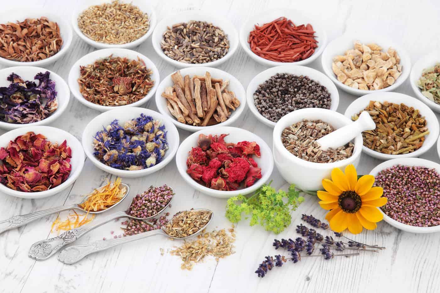 علاج نزيف الرحم بالأعشاب