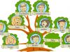 فهم وتصميم شجرة العائلة
