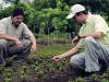 ما طريقة الزراعة في المنزل ؟
